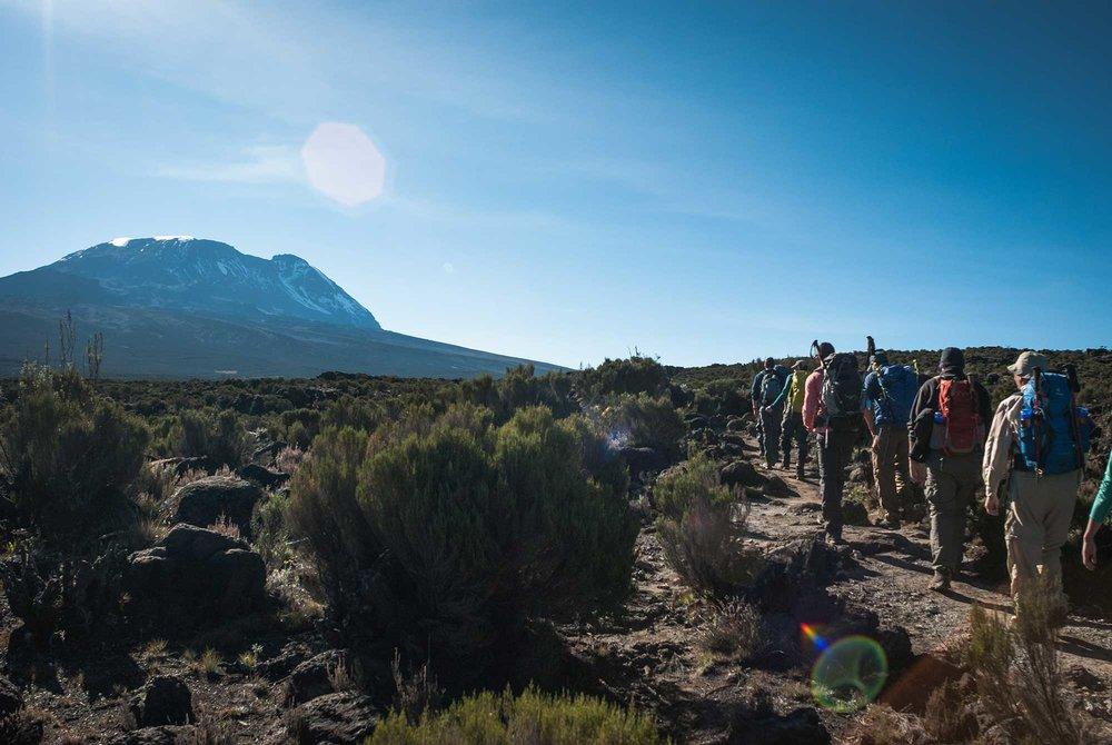 D3-14-walking-toward-kibo-kilimanjaro-shira-plateau-03.jpg
