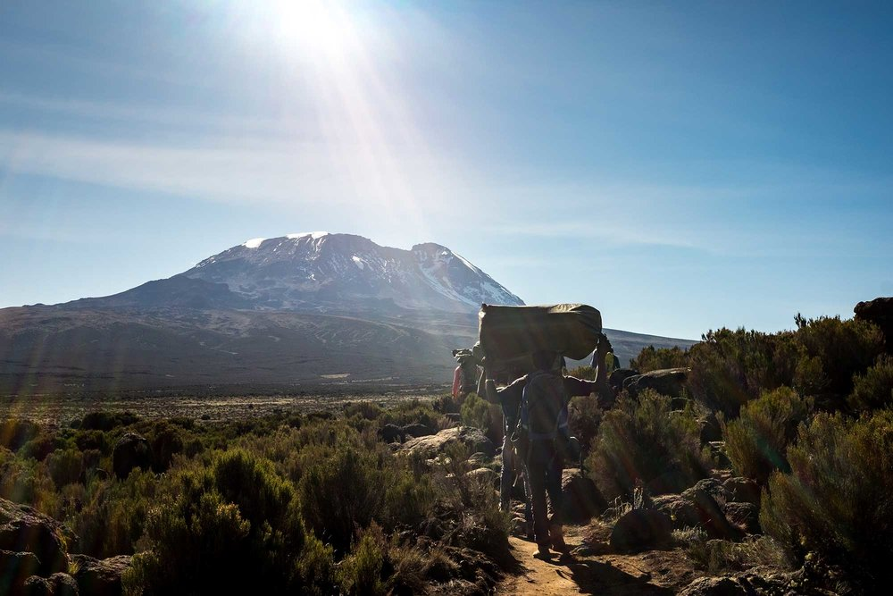 D3-11-poerters-walking-toward-kibo-kilimanjaro-shira-plateau.jpg