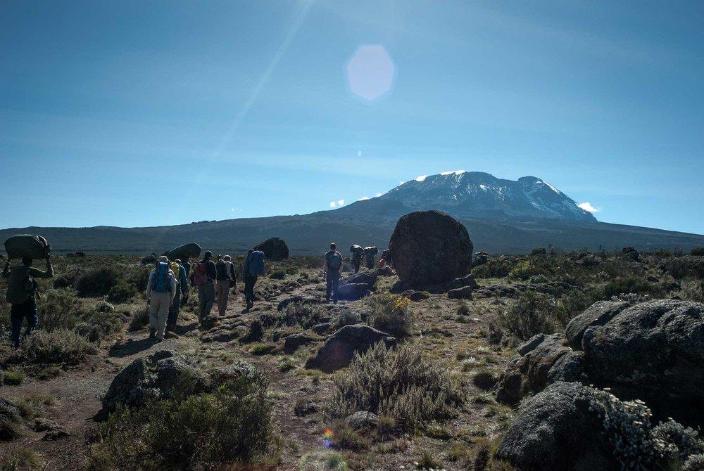 D3-19-walking-toward-kibo-kilimanjaro-shira-plateau-05.jpg