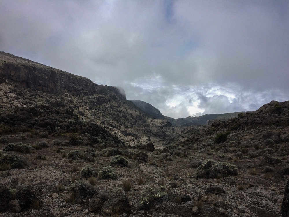 D5-15-heading-to-karanga-camp-kilimanjaro.jpg