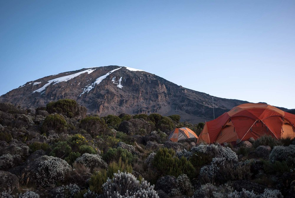 D6-03-kibo-over-karanga-camp-kilimanjaro.jpg