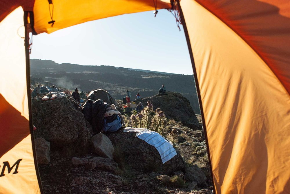 D6-11-disorienting-horizons-karanga-camp-kilimanjaro.jpg