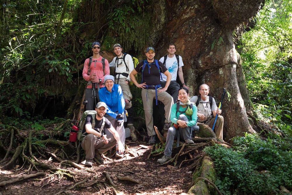 Most of team Duma taking a break beneath a gigantic tree on the way out of the Kilimanjaro park.