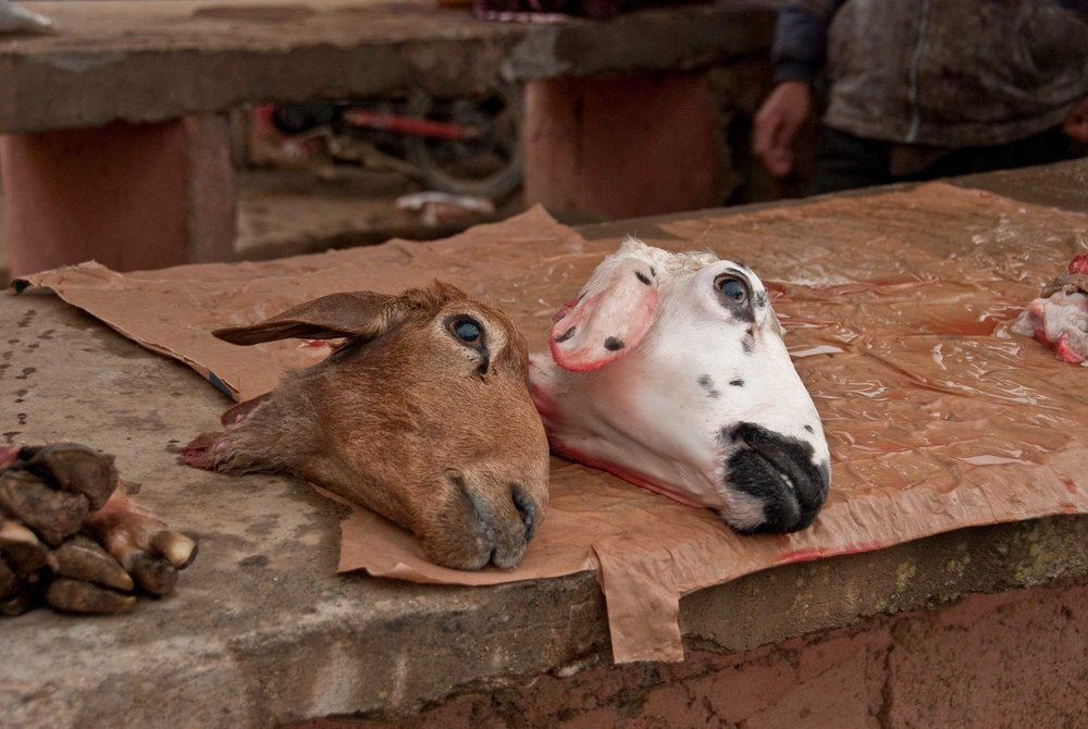 You can literally purchase a goat's head at this market.