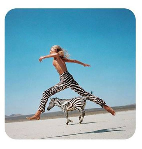 zebra.jog