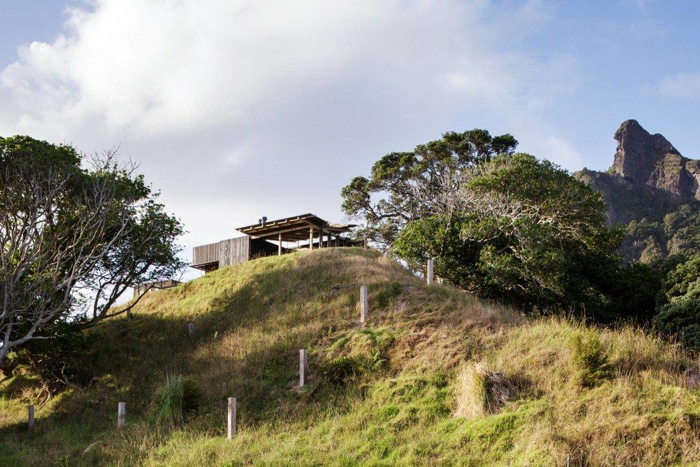 herbst roof1.jpg