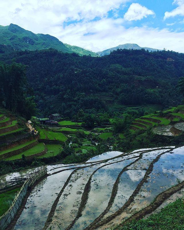 Already missing the tranquil countryside surrounding Lao Chai. #laochai #sapa #homestay #tourism #nature #trekking #volunteer #cbtvietnam #communitybasedtourism