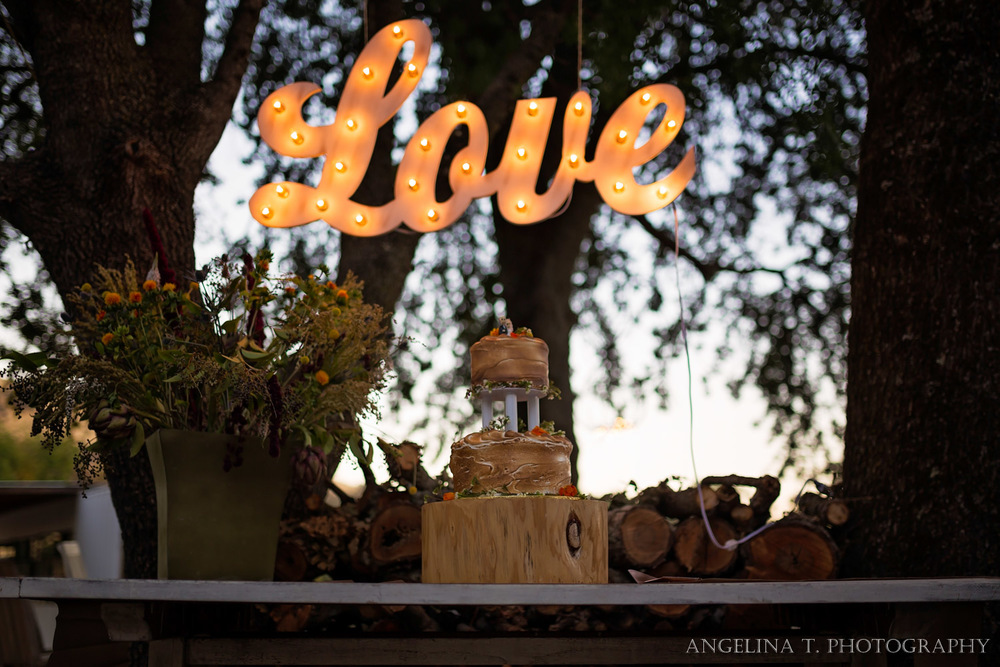 California Rustic Wedding Vacaville-60.jpg