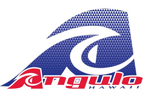 Angulo Logo 2016.jpg