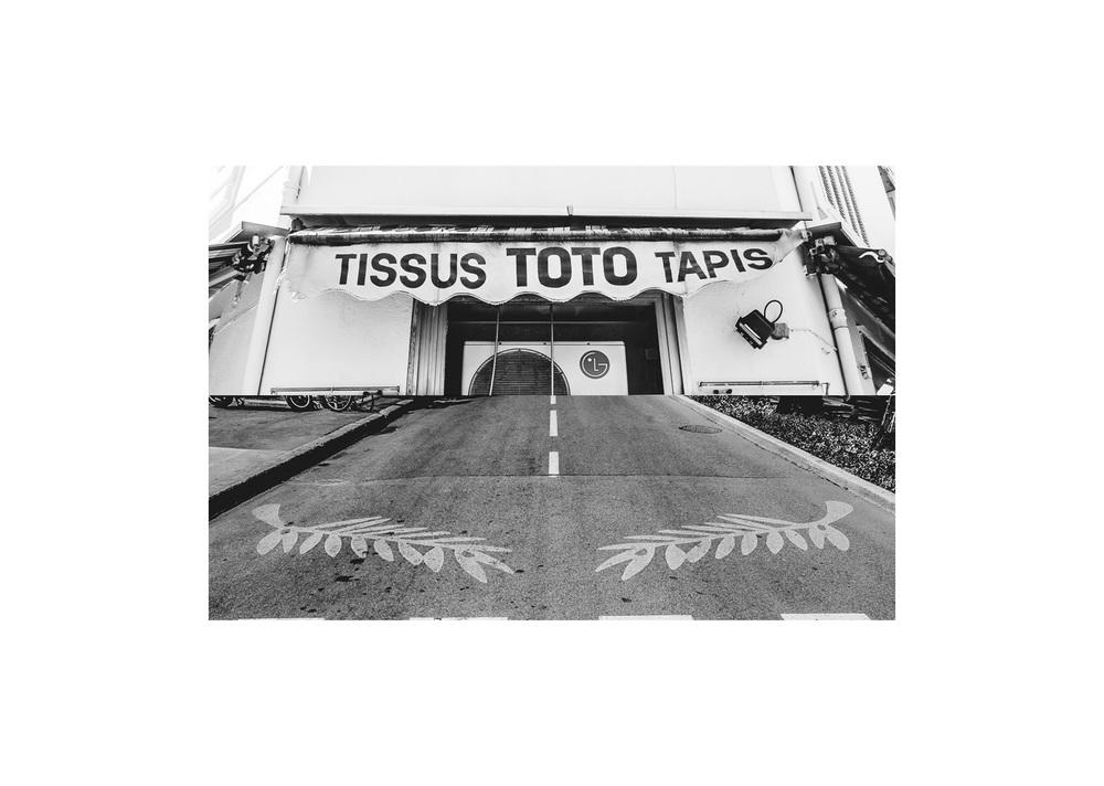 Toto+PalmeDor.jpg