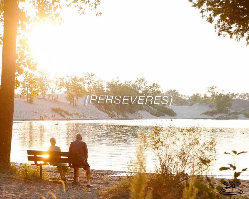 Perseveres-Just Joy Imaging