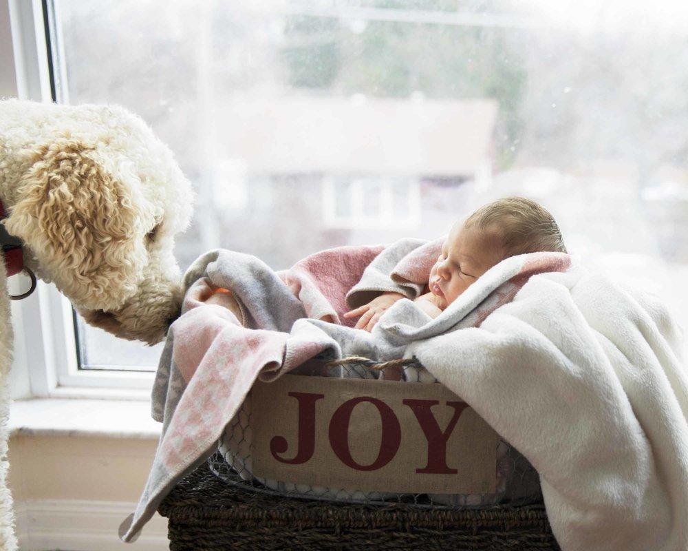 Mr. DJV Covey Family-Newborn-JJI2018 -26.jpg