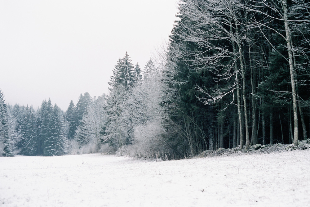 07_WinterCS.jpg