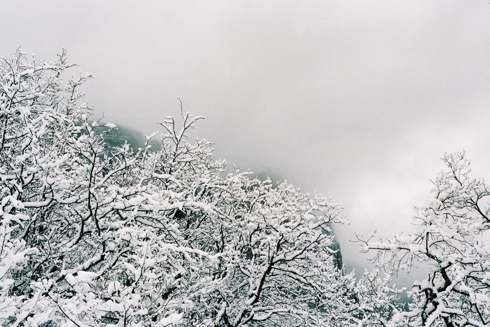 10_WinterCS.jpg