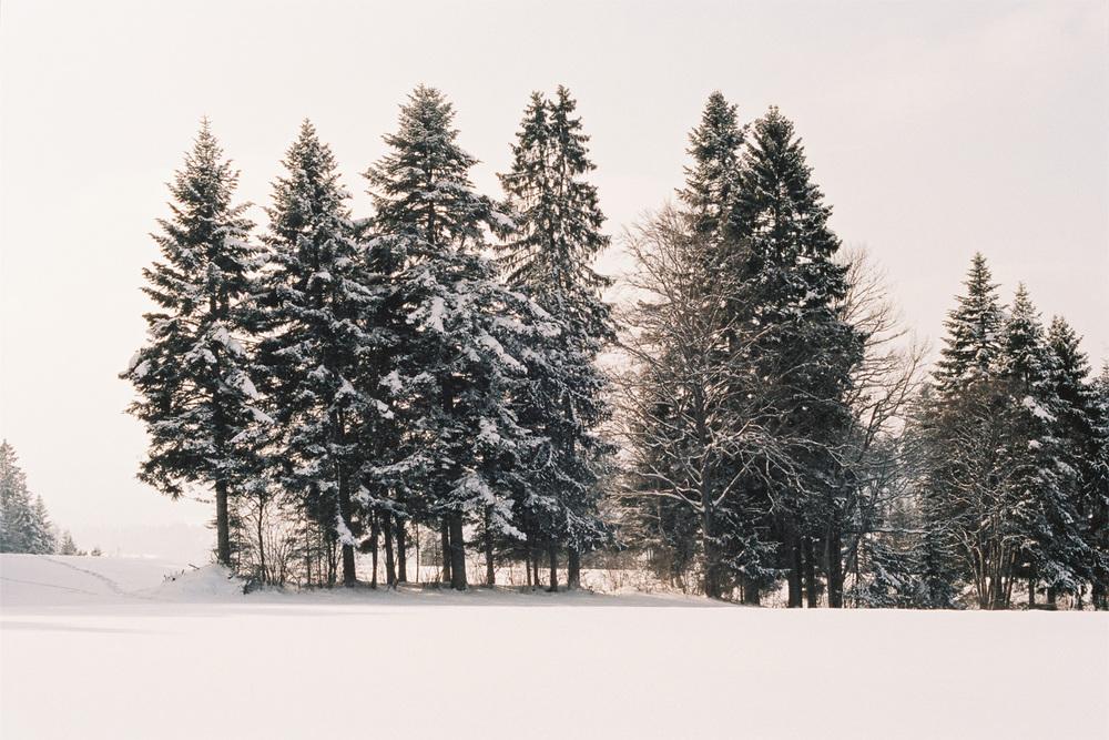 12_WinterCS.jpg