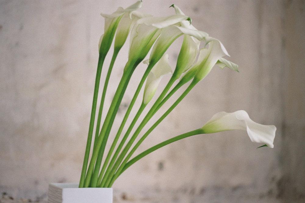 40_FlowersCS.jpg