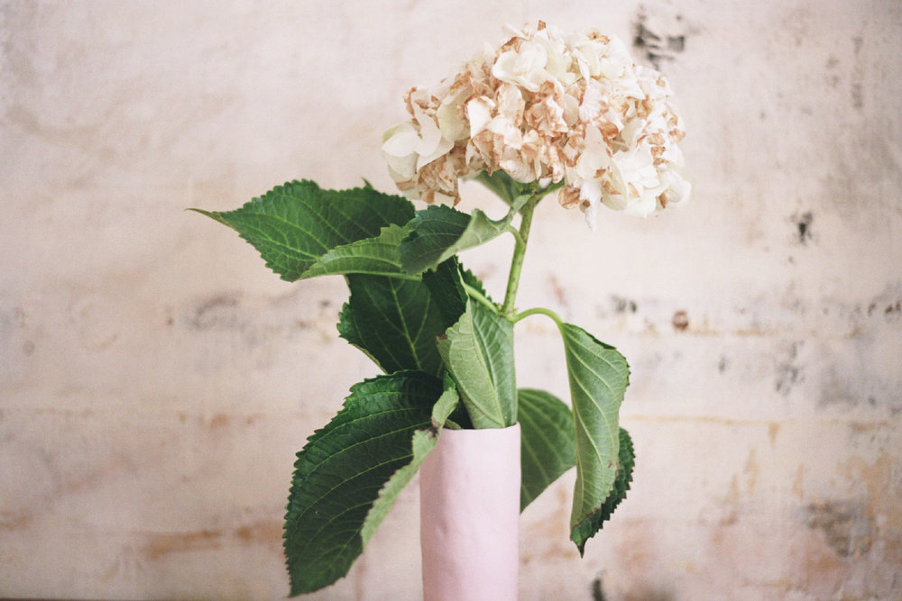 41_FlowersCS.jpg