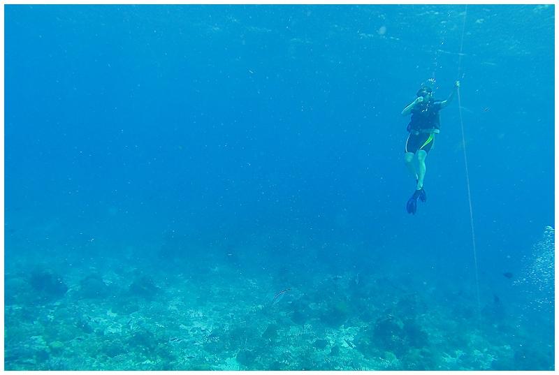 Caribbean+Vacation+Cozumel+Mexico+SCUBA+diving+%252813%2529.jpg