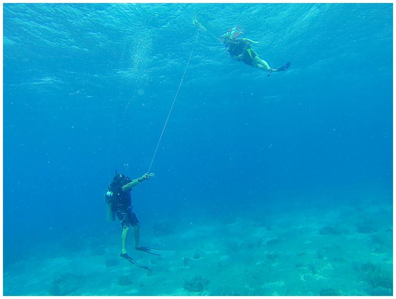 Caribbean+Vacation+Cozumel+Mexico+SCUBA+diving+%25287%2529.jpg