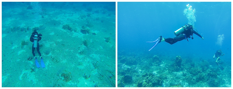 Caribbean+Vacation+Cozumel+Mexico+SCUBA+diving+%25286%2529.jpg