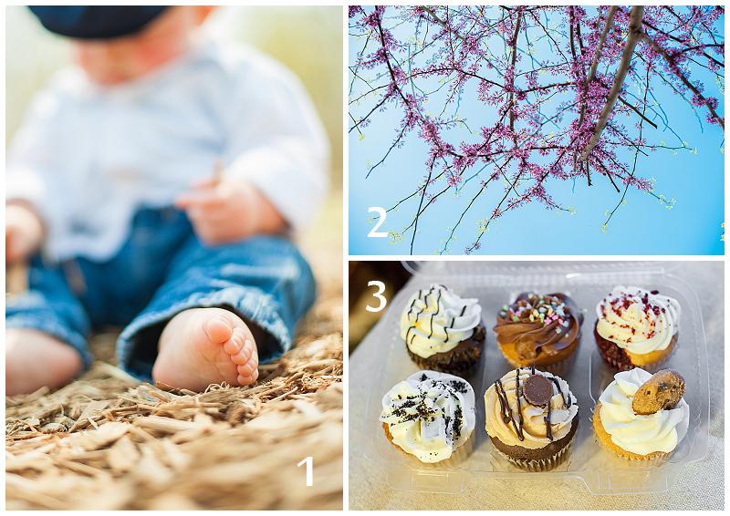 Weekend+Recap+April+11-14.jpg