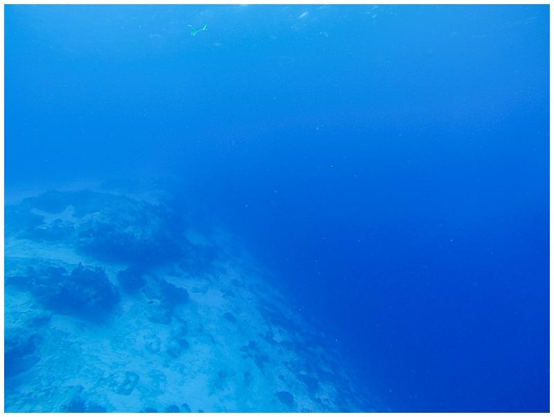 Caribbean+Vacation+Cozumel+Mexico+SCUBA+diving+%252828%2529.jpg