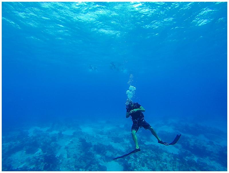 Caribbean+Vacation+Cozumel+Mexico+SCUBA+diving+(25).jpg