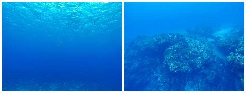 Caribbean+Vacation+Cozumel+Mexico+SCUBA+diving+%252824%2529.jpg