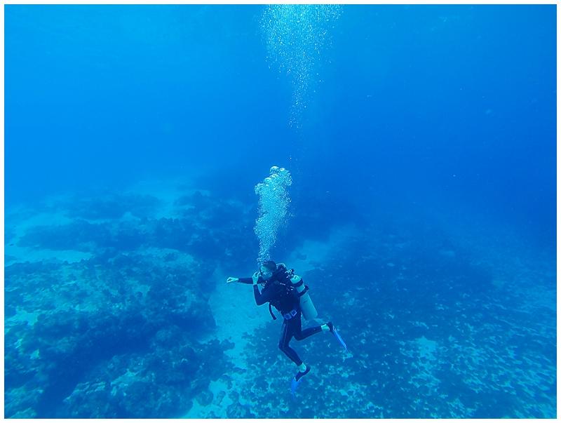 Caribbean+Vacation+Cozumel+Mexico+SCUBA+diving+%252823%2529.jpg