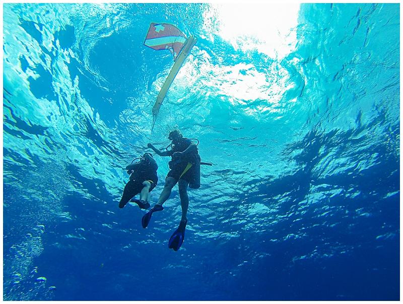 Caribbean+Vacation+Cozumel+Mexico+SCUBA+diving+%252822%2529.jpg