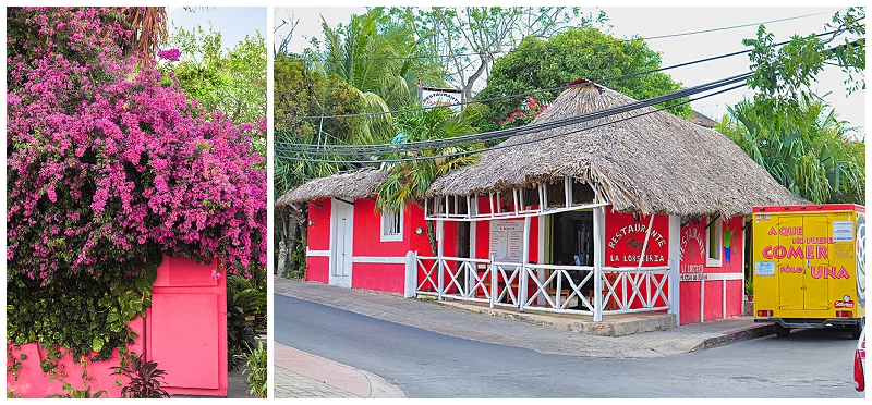 Caribbean+Vacation+Cozumel+Mexico+SCUBA+diving+%252851%2529.jpg