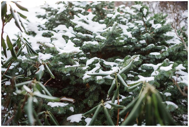 Snowy Christmas Winter Wedding Mountain Lake Lodge (17).jpg