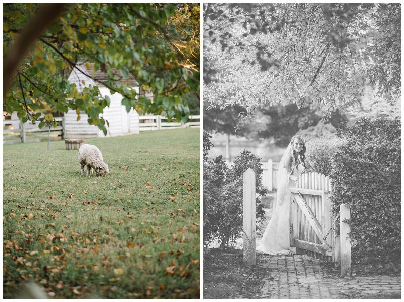 Colonial Williamsburg Bridals Sunset Fall (10).jpg