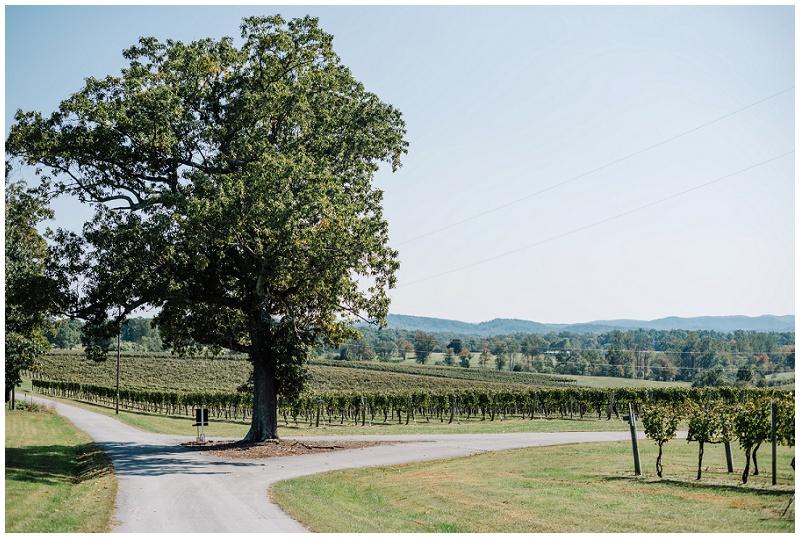 Grace Estate Winery Purple Wedding (11).jpg