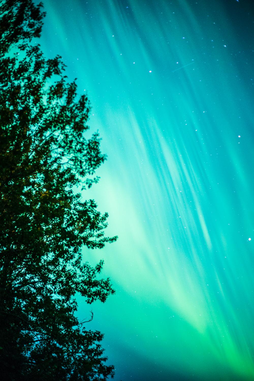 Aurora Borealis-8.jpg
