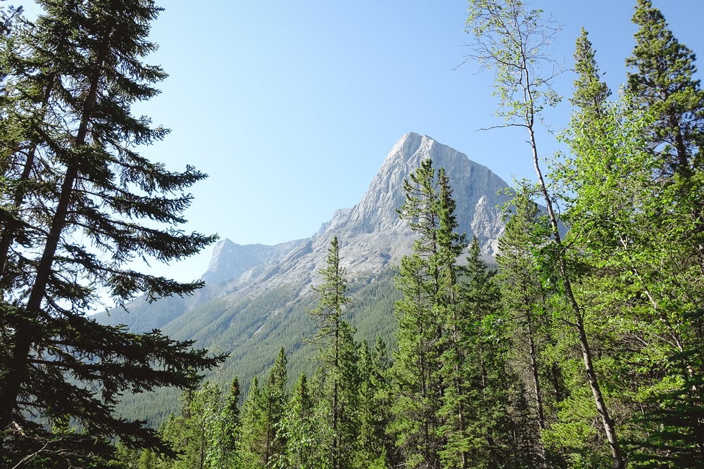 Canmore-5.jpg