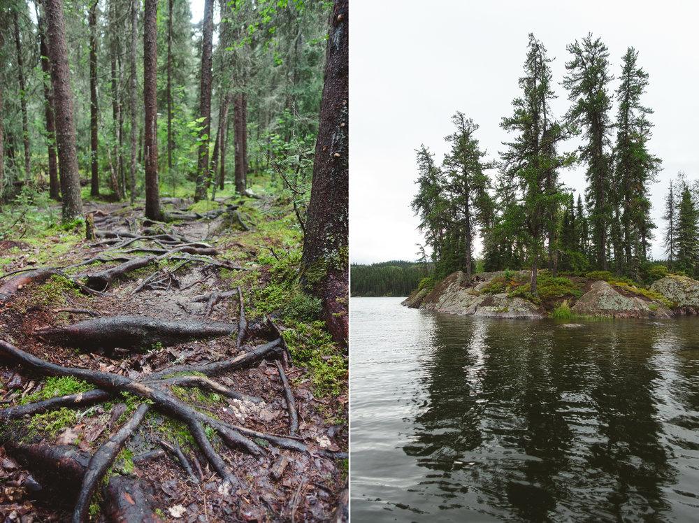 Canoe Trip-10 copy.jpg