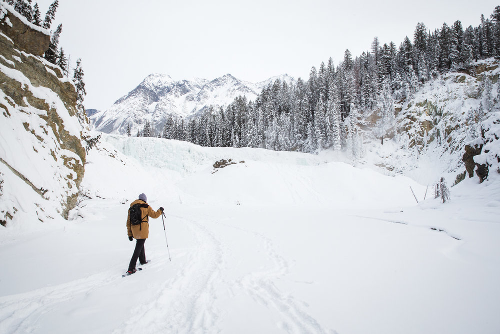 Snowshoeing with James to Wapta Falls in Yoho NP - January 1View Blog