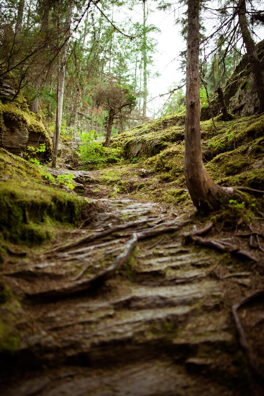 ©KateePederson-Banff-Revy-30.jpg