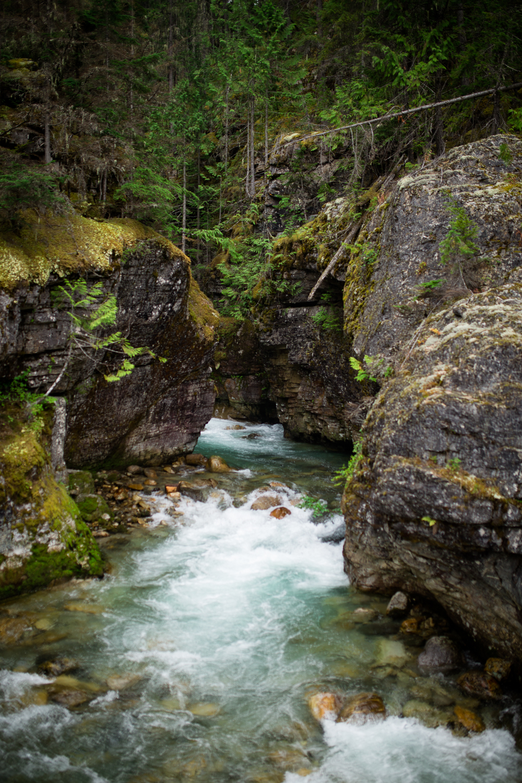 ©KateePederson-Banff-Revy-35.jpg