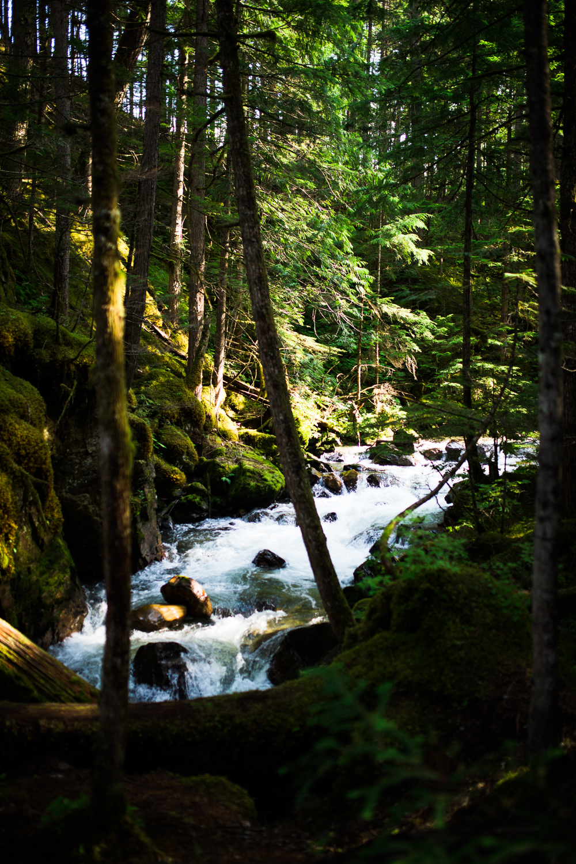 ©KateePederson-Banff-Revy-72.jpg