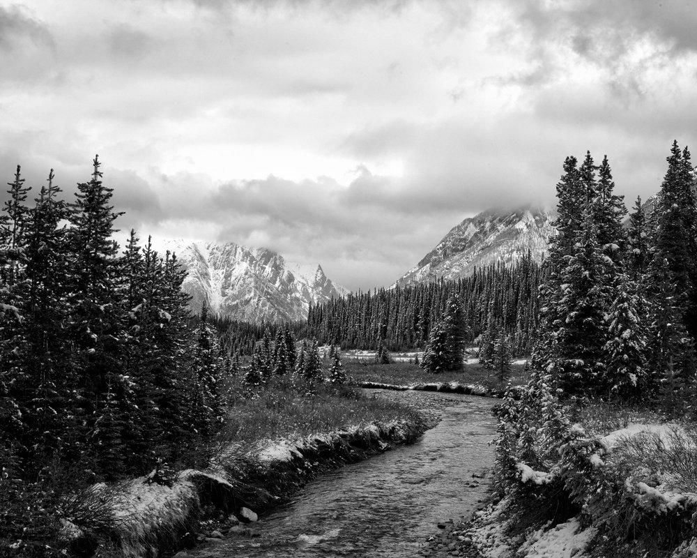Snowy River Through Spray Lakes Provincial Park