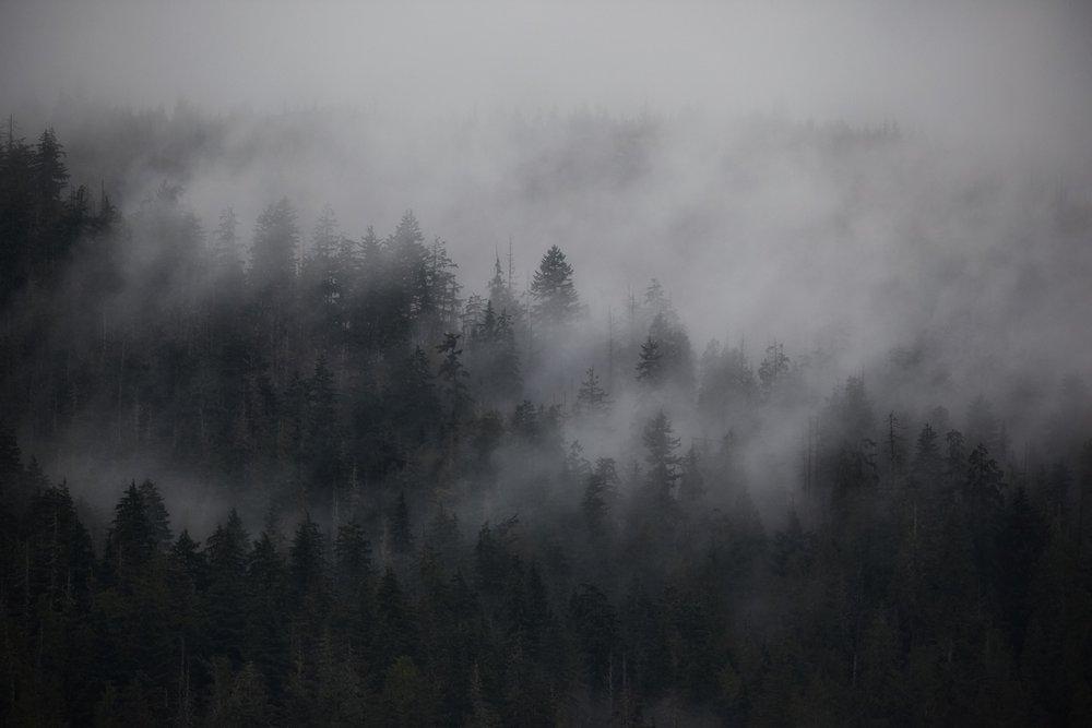 CloudsForming.jpg