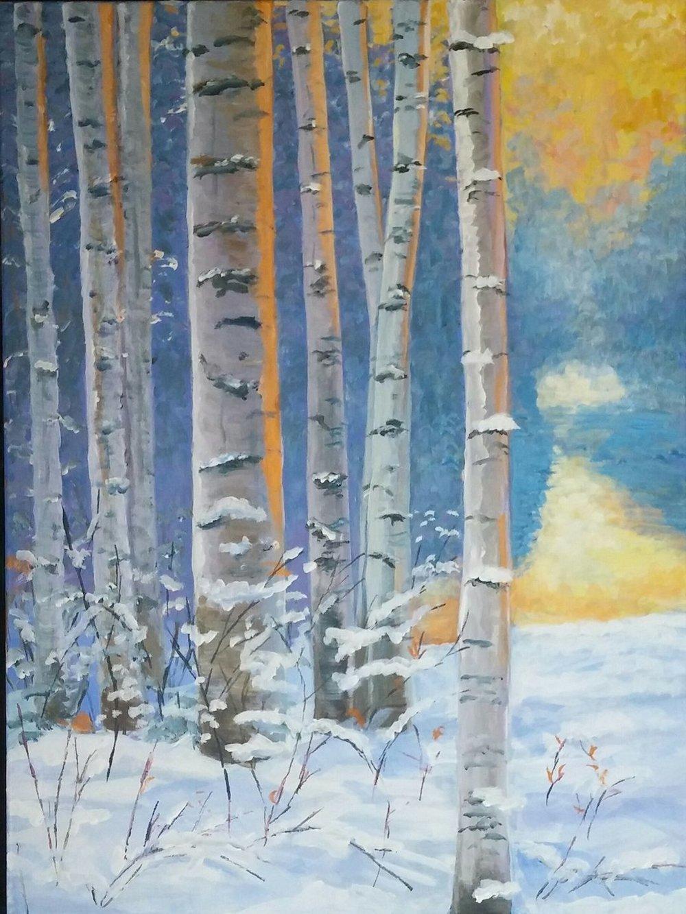 Birches in snow.jpg