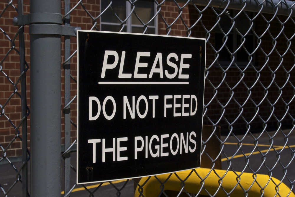 dont-feed-the-pigeons-sign-nyc-street-timeframes-wbc.jpg