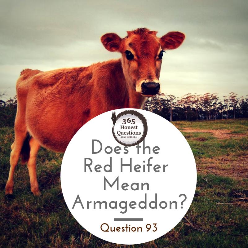 Red Heifer Armageddon