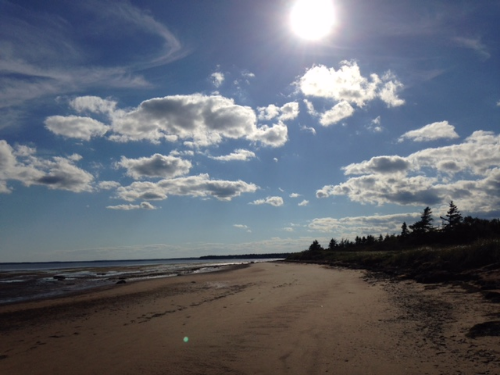 Because the warmest saltwater beaches in Canada are found in New Brunswick.