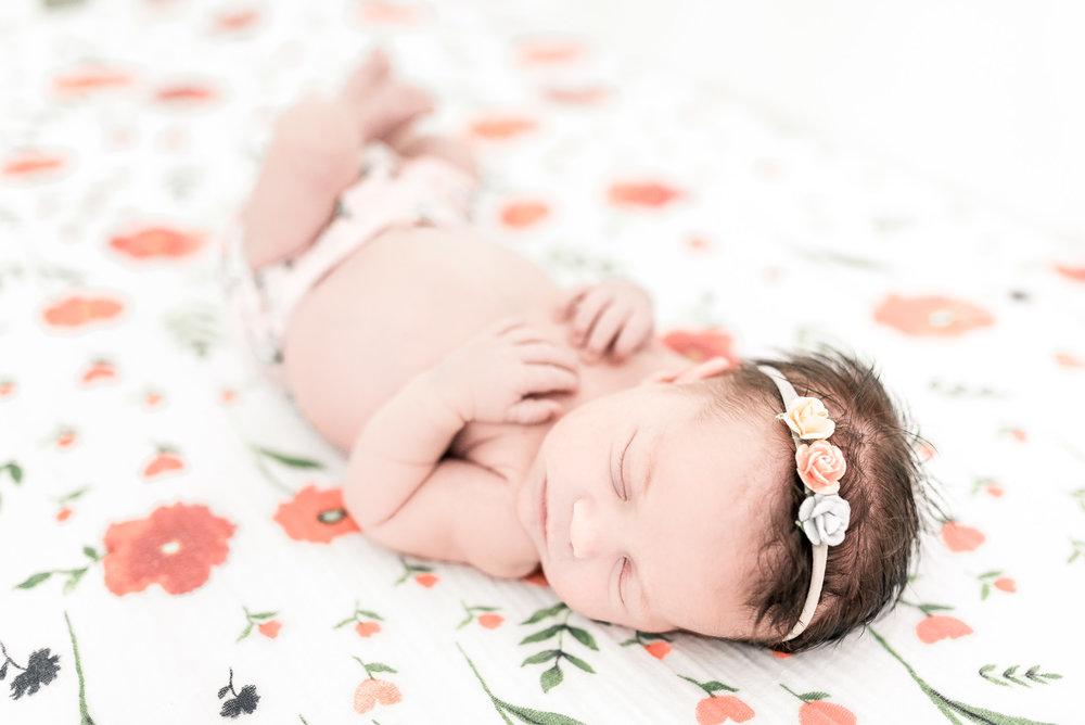 RachaelLaynePhotography_SCfamilyphotographer02.jpg