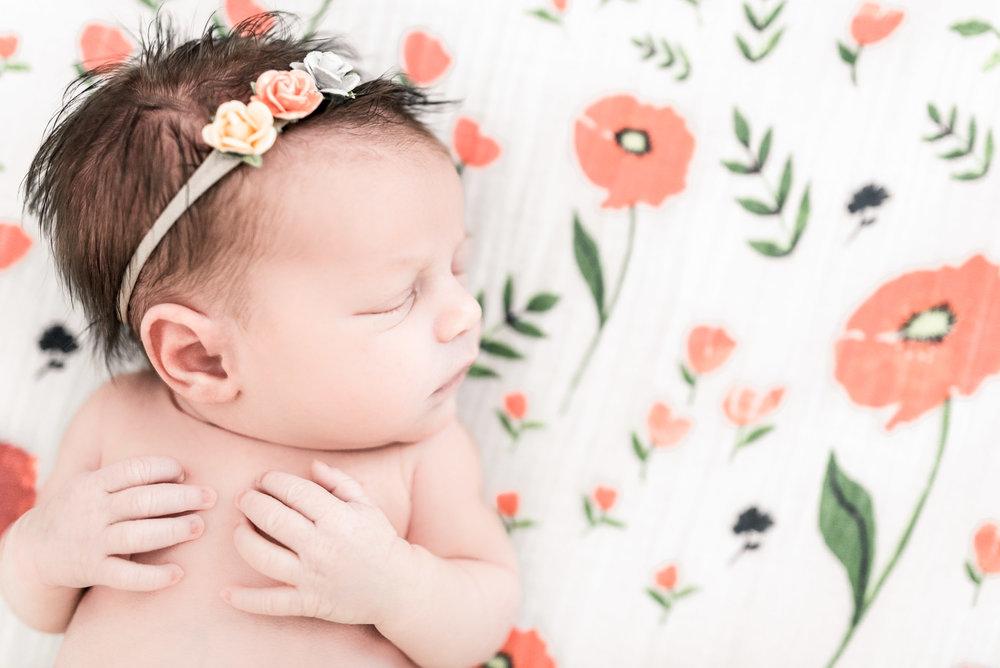 RachaelLaynePhotography_SCfamilyphotographer03.jpg