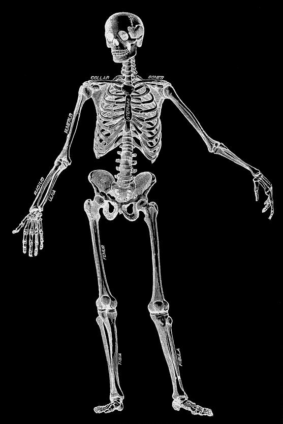 Fractured Bone Attorney